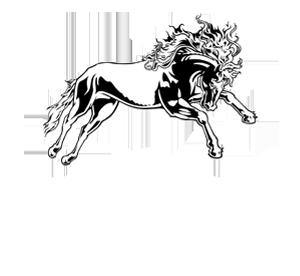 Arsenal Media