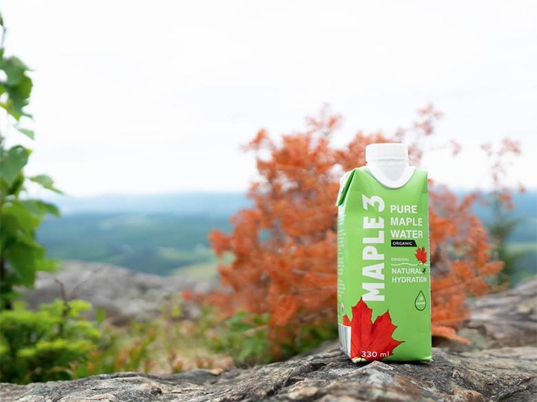 L'eau d'érable de Maple 3, pure, naturelle, délicieuse et hydratante