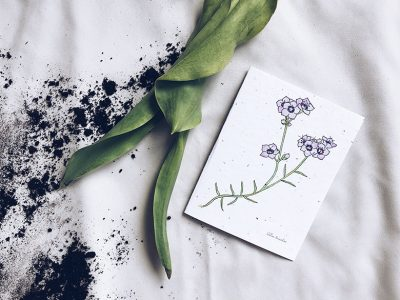 Flowerink - Papeterie plantable, fleurs sauvages et fines herbes